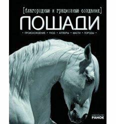 Моє хобі: Благородные и грациозные создания - лошади (р)